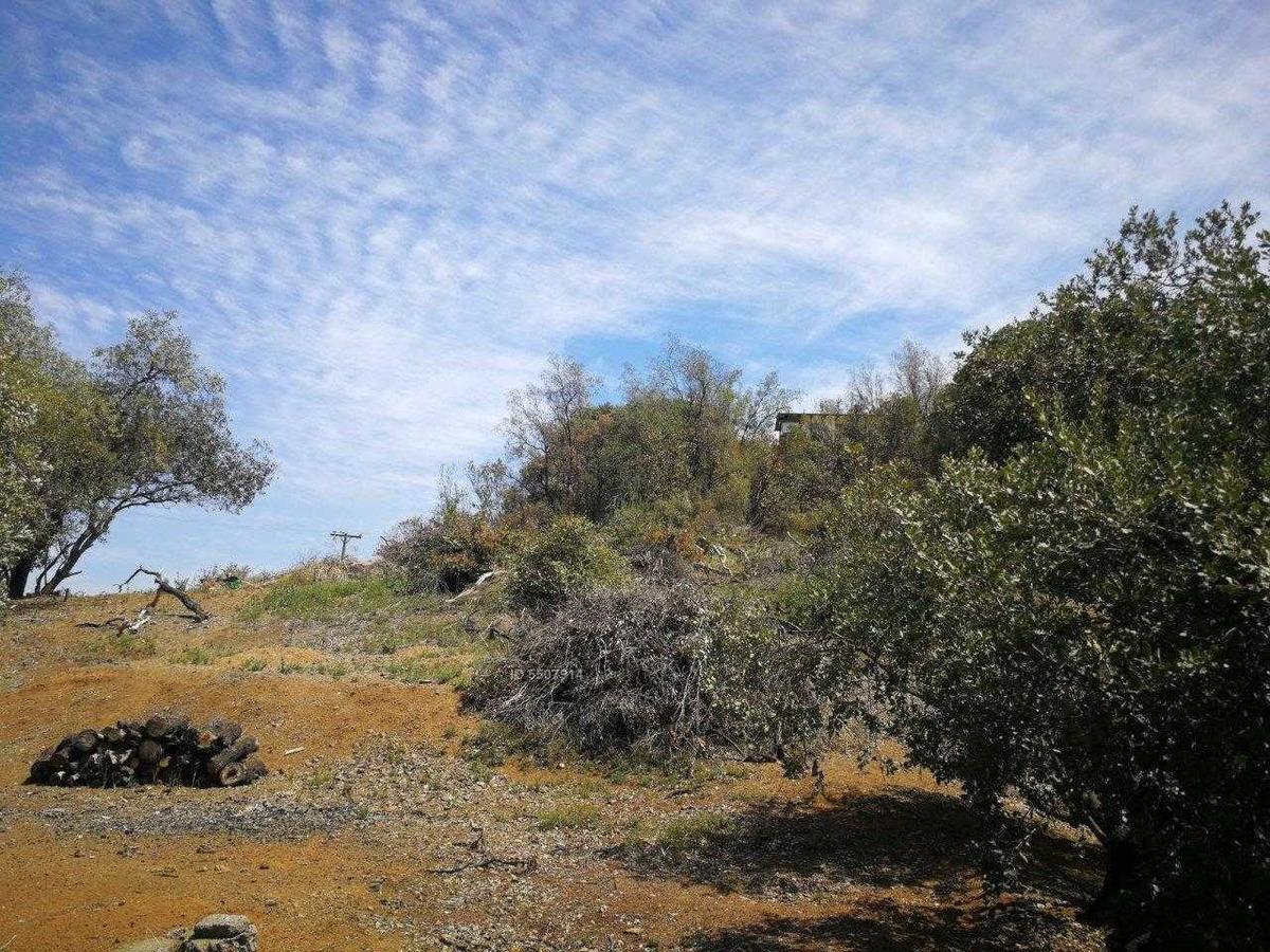 condominio las hijuelas del arrayan