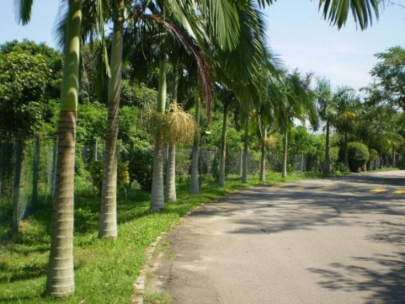 condominio village marapendi - 022g - 4908736