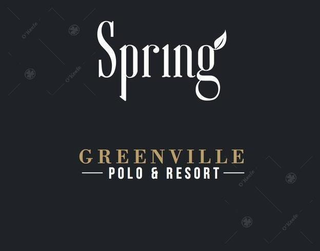condominios greenville spring! 50% off