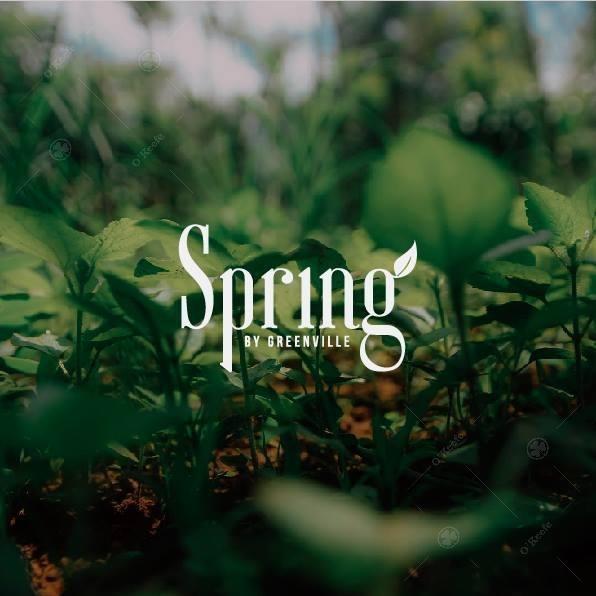 condominios greenville spring! 50% off