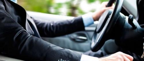 conductor elegido, acompañante, bilingüe.