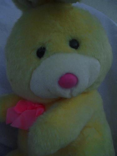conejito amarillo