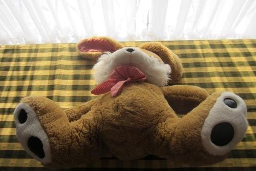 conejo de peluche, de 35 cm, excelente calidad!!, impecable