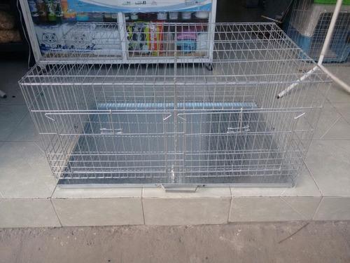 conejo mascotas jaula