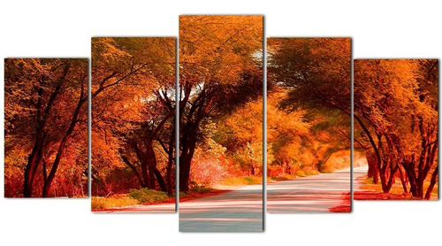 conjunto 5 quadros caminhos da natureza 124x62cm sem furação