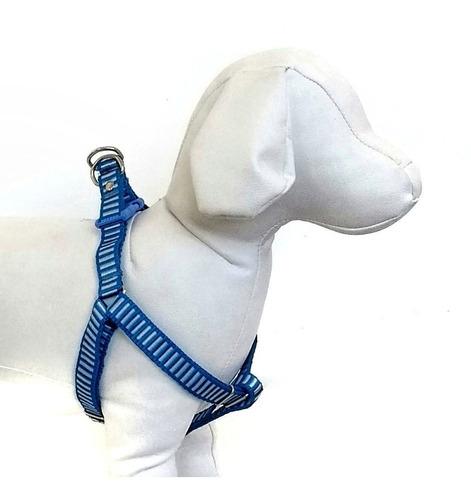 conjunto coleira peitoral e guia para cães de médio porte