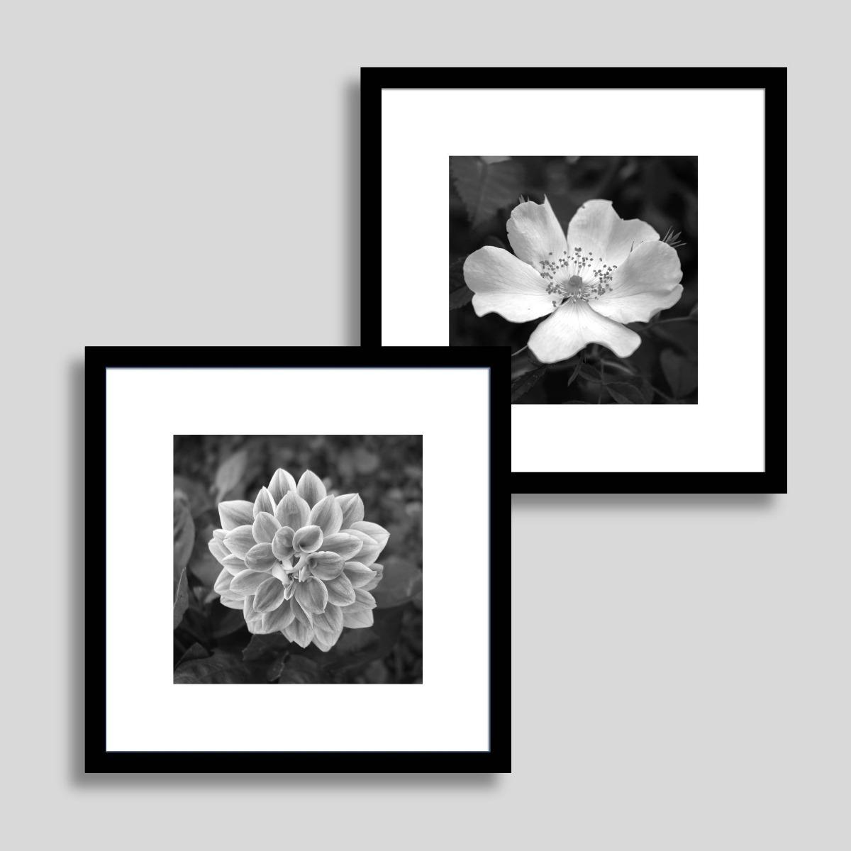 9d523ce5e conjunto quadro decorativo floral sala quarto super promoção. Carregando  zoom.