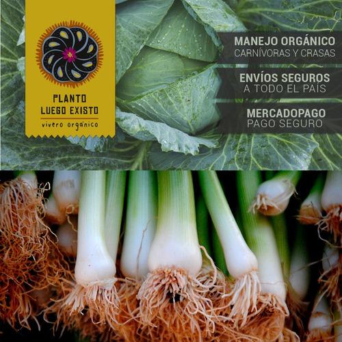 connoisseur bloom part a advanced nutrients 1000 ml