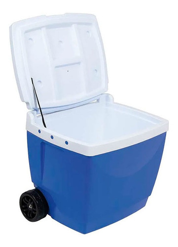 conservadora heladerita heladera portatil playa ruedas 42 l