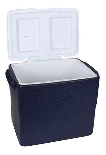 conservadora heladerita portatil playa camping 40 l mor