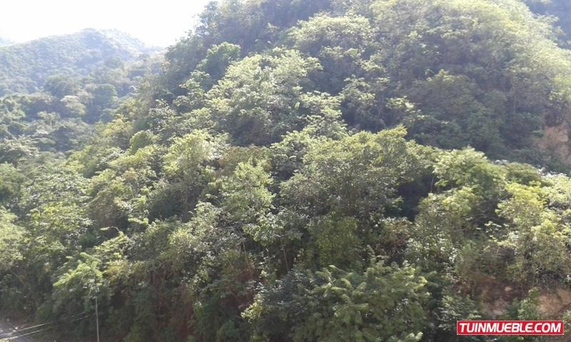 consolitex vende carabobo chimeneas a428 vista parque jl