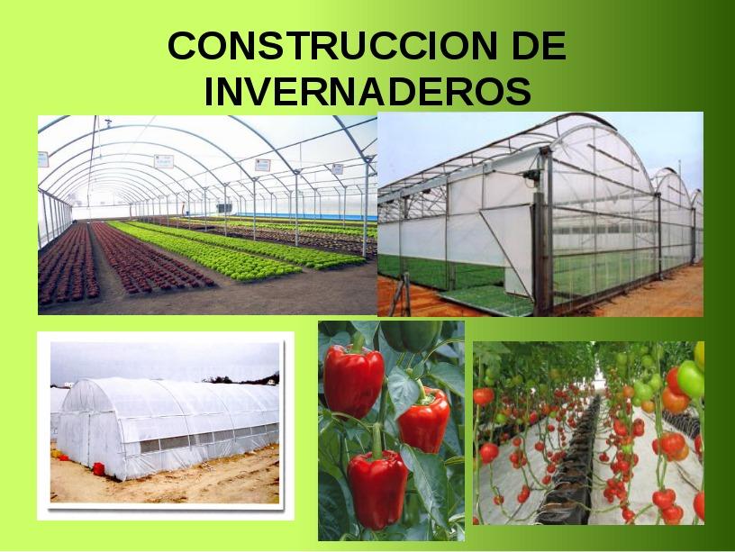 Construccion De Invernaderos Bs En Mercado Libre