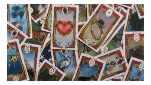 consulta de jogo de buzios, cartas e tarot.  5 perguntas...