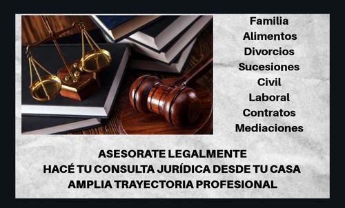consulta jurídica on line