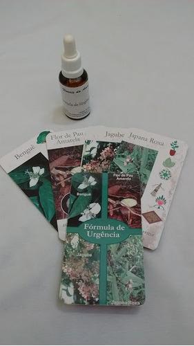 consulta online terapia florais da amazônia
