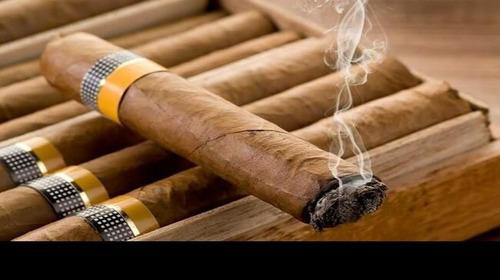 consultas con tarot y y tabaco