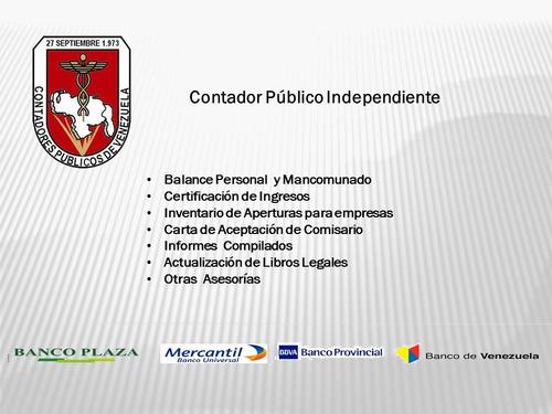 contador público independiente