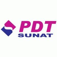 contadora colegiada con amplia experiencia sunat pdt