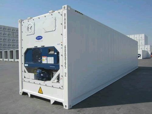 contenedores maritimos reefers congelado frio 40 bs. as.