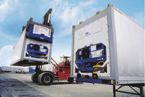 contenedores marítimos refrigerado reefer cámara frío 40