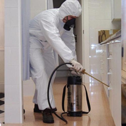 control de plagas - con certificado - empresa habilitada