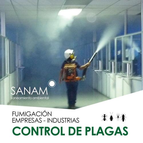 control de plagas! fumigación zona sur