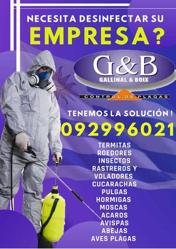 control de plagas, fumigaciones y desinfección
