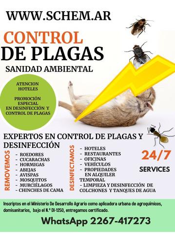 control de plagas, fumigador, fumigaciones pinamar, carilo