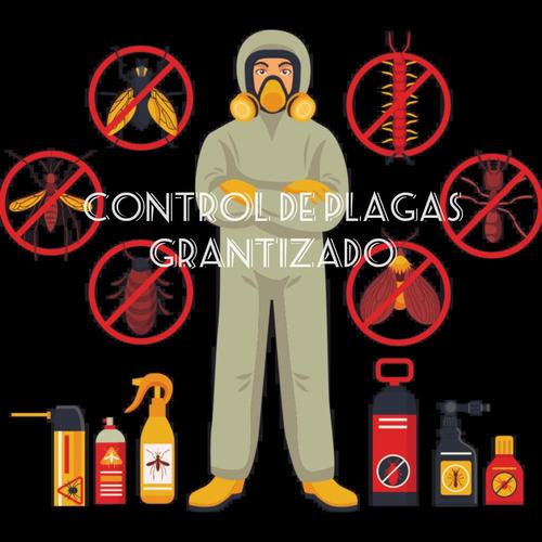 control de plagas y fumigacion