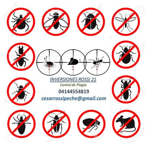 control integral de plagas, fumigación