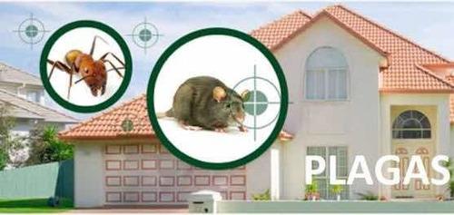 control y prevención de plagas, desinfección y sanitizar