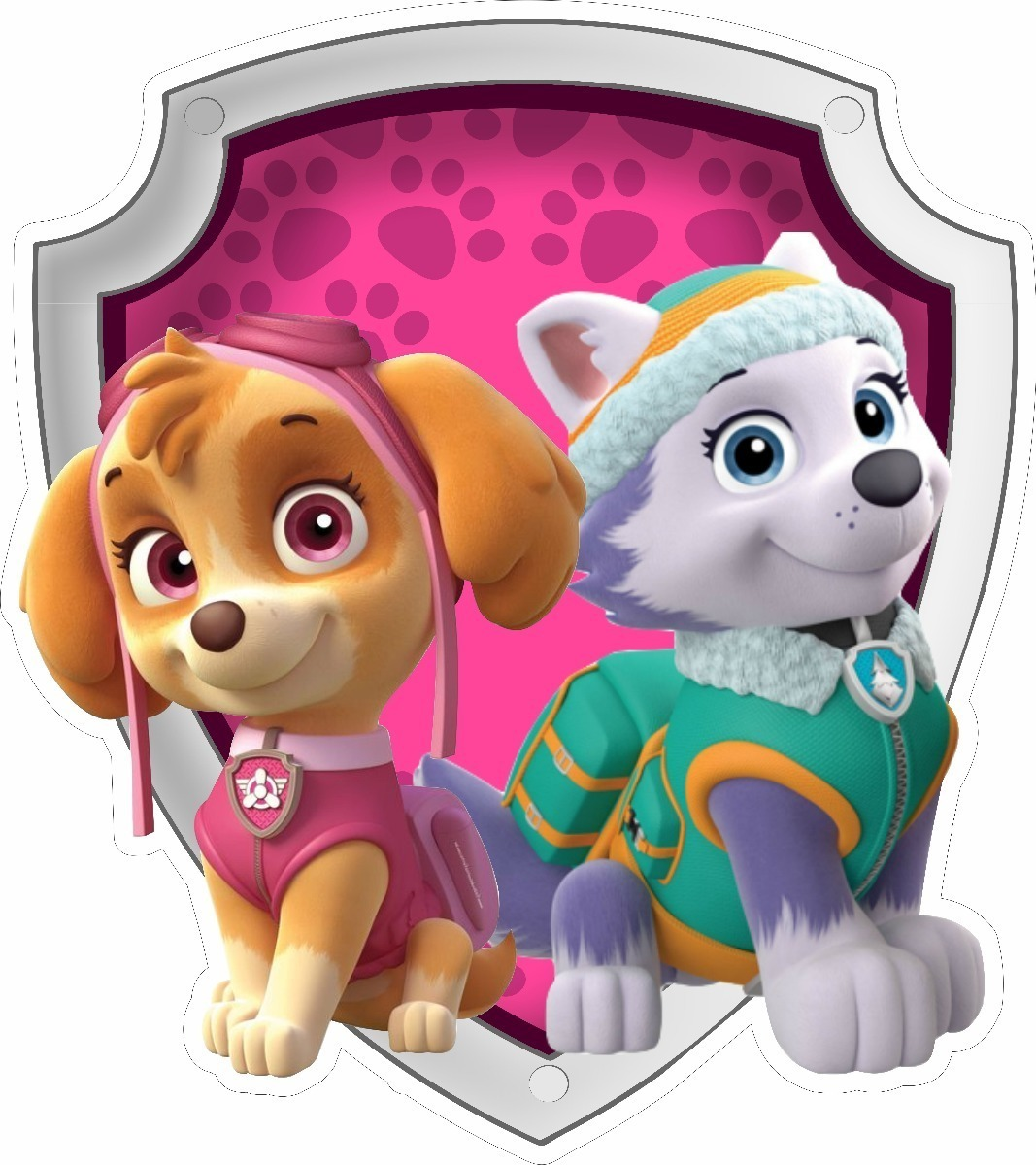 Convite Animado Patrulha Canina Skye Everest R 17 96 Em
