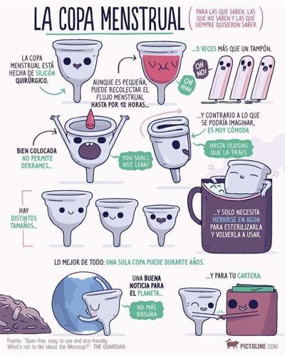copa menstrual aneer