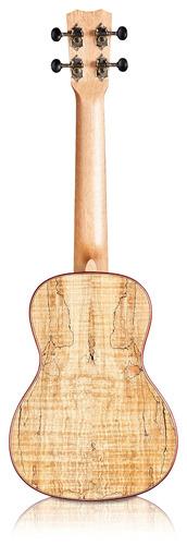 córdoba 24c concert ukulele