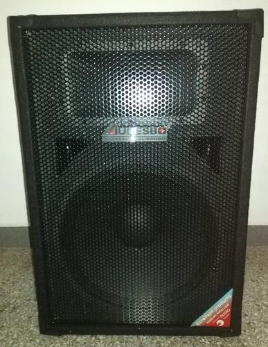 cornetas pasivas 2 vias audioesbo 15 pulgadas 2000 w 500 rms
