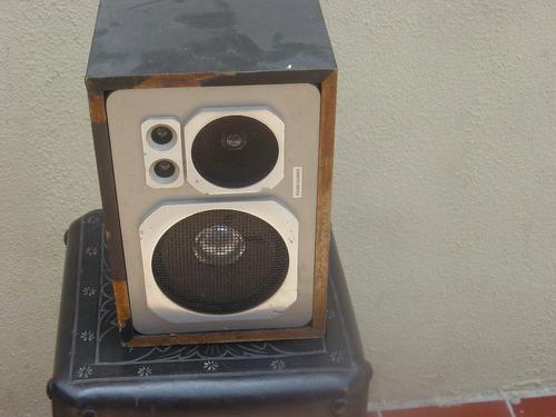 cornetas sound barrier de 100 watts