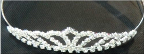 corona de reina carnaval #2012-18