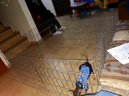 corral para perro 1mt de alto 6 paneles razas grandes