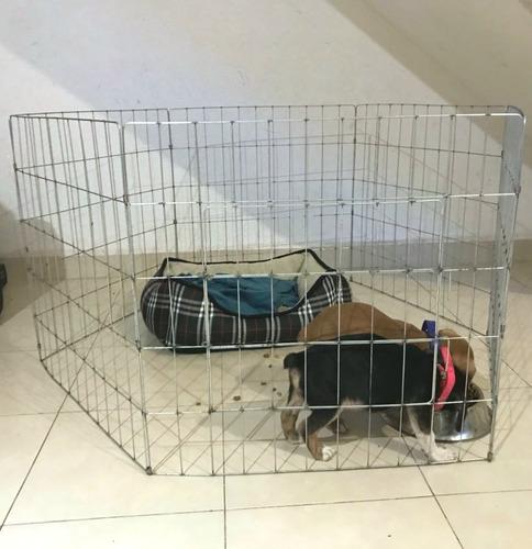 corral para perros 60cm de alto 6 paneles