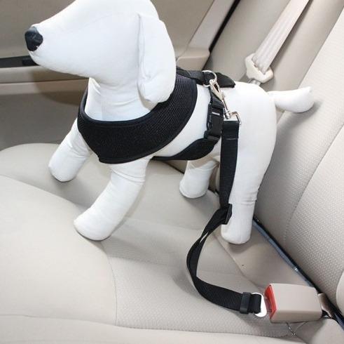 correa cinturón de seguridad auto para mascotas