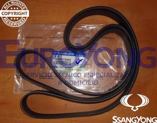 correa de accesorios original ssangyong diesel actyon kyron