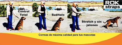 correa elastica perros rok straps mediana negra reflejante