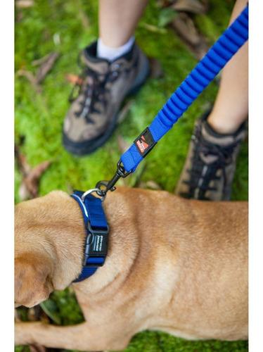 correa perro zero shock ezydog para control y entrenamiento