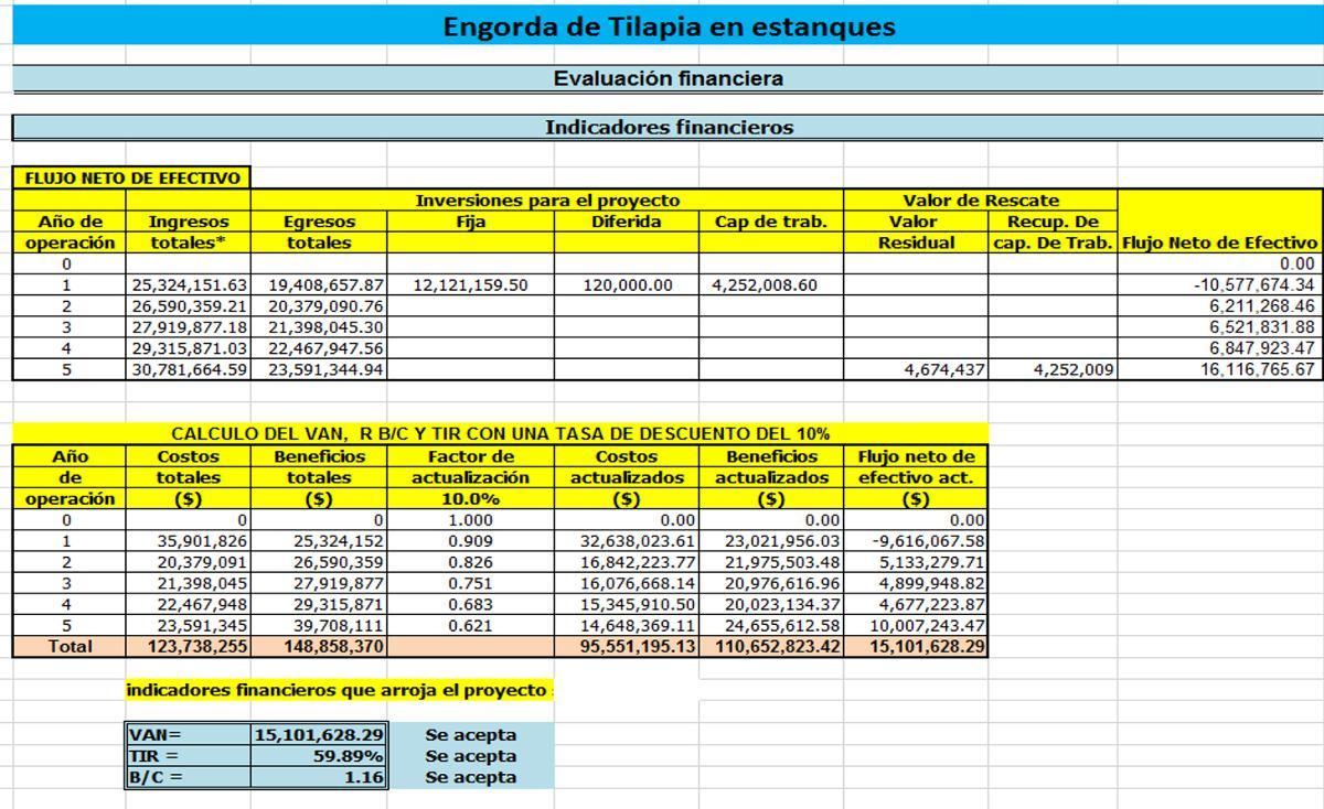 corrida financiera para proyecto de producci n de tilapia