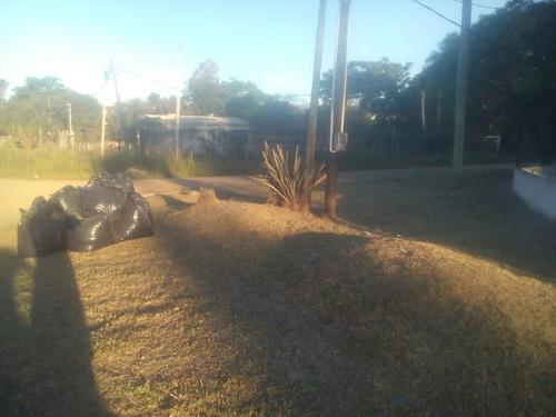 corta cesped, poda y tala, limpiezas de terrenos 092117210