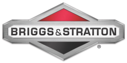 cortadora cesped naftera briggs & stratton 450 bolsa r altas