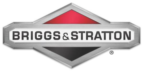 cortadora cesped naftera briggs & stratton 450e reg alt tbx