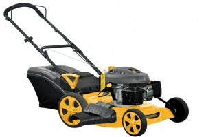 cortadora de césped 20 5 hp forest & garden pro cp821rb