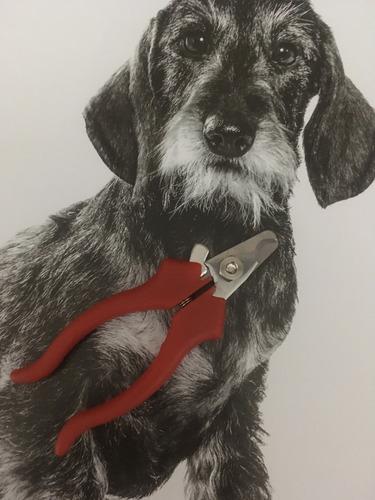 cortauñas chico reforzado para perros