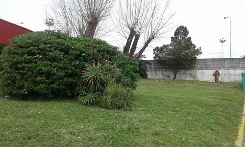 corte de cesped  pasto jardineria
